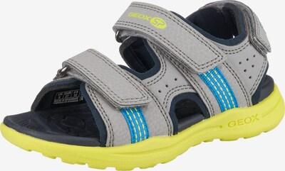GEOX Sandalen  'Vaniett Boy' in royalblau / ultramarinblau / neongelb / grau, Produktansicht