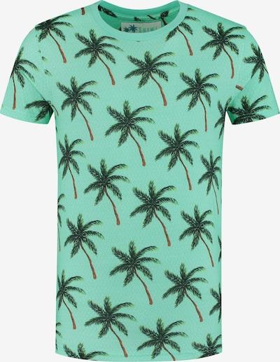 Shiwi Shirt in grün: Frontalansicht