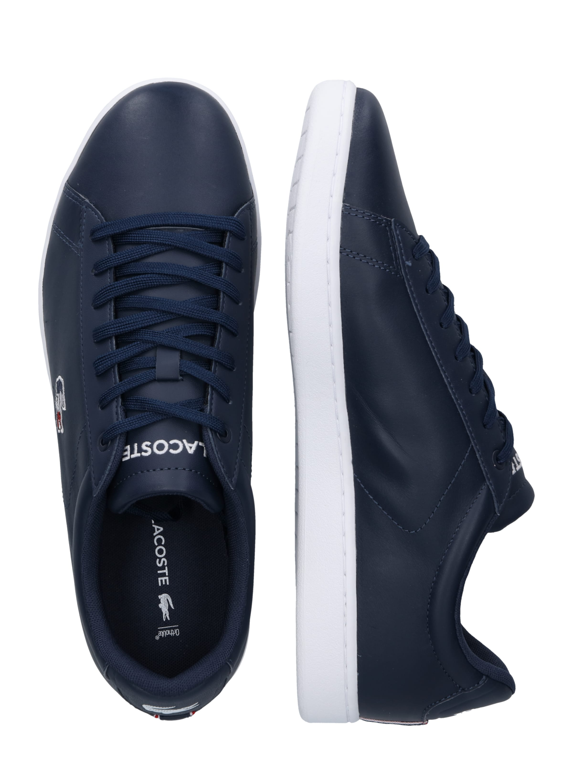 Lacoste Sneaker Navy Evo' In 'carnaby xdeBroWC