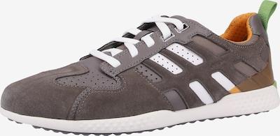 GEOX Sneaker in grau / grün / weiß, Produktansicht