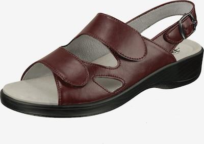 Natural Feet Sandaal 'Cornelia' in de kleur Bruin, Productweergave