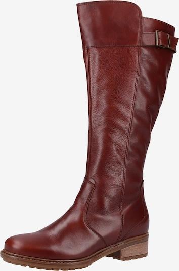 ARA Stiefel in cognac, Produktansicht