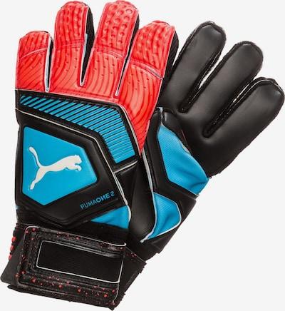 PUMA Sporthandschoenen 'One Protect 2 RC' in de kleur Neonblauw / Lichtrood / Zwart, Productweergave