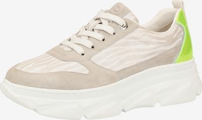 bugatti Sneaker in creme / camel / kiwi, Produktansicht