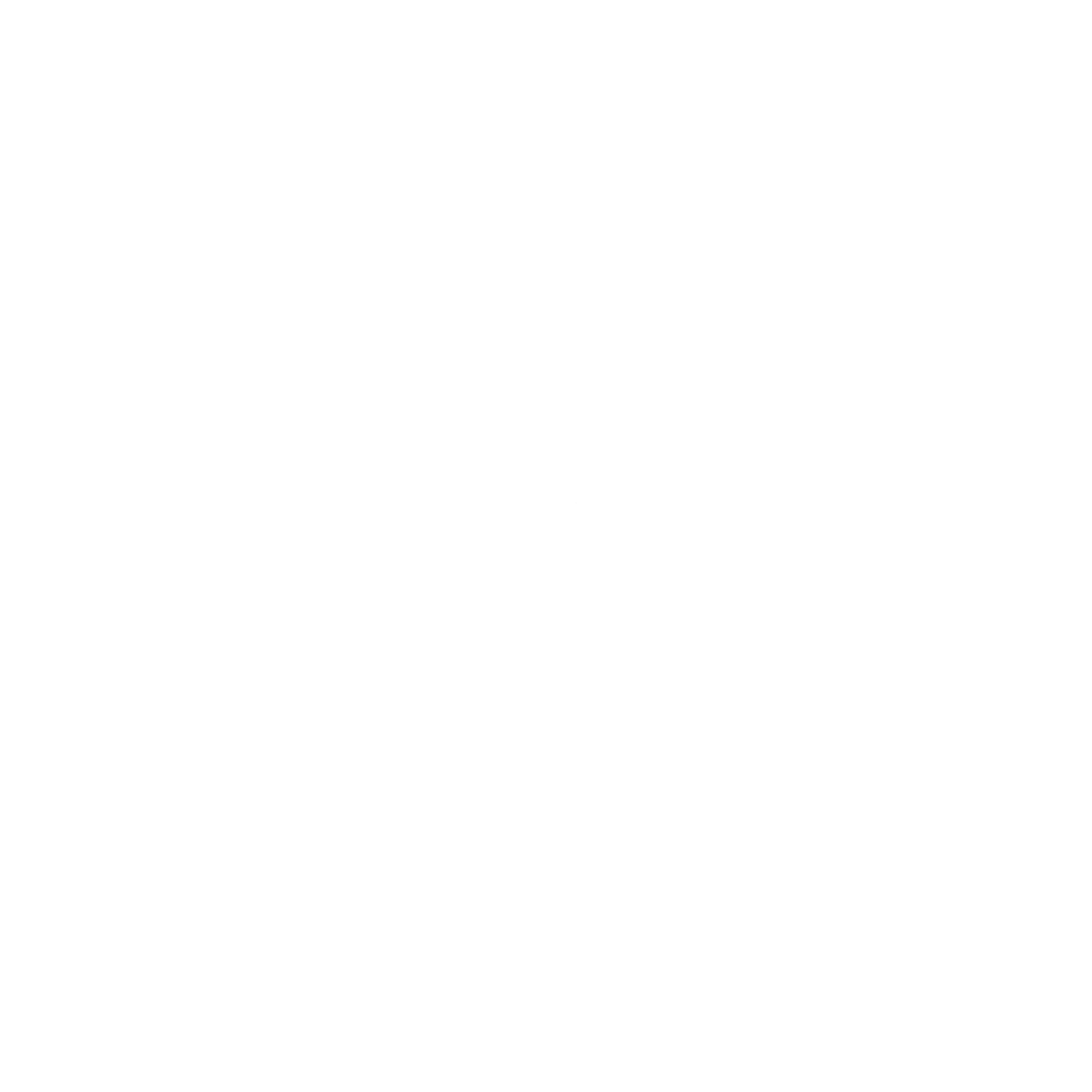Pride and Soul Logo