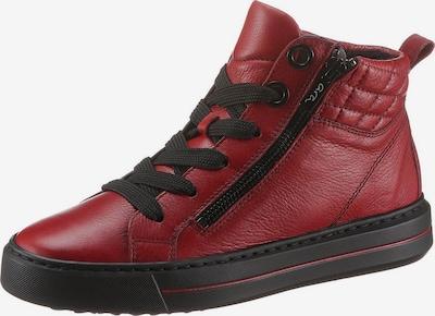 ARA High-Top Sneakers in Wine red / Black, Item view