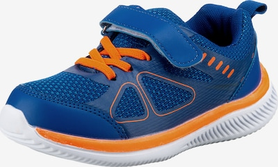 D.T. NEW YORK Sneaker in blau / orange, Produktansicht