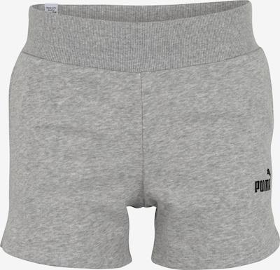 PUMA Shorts in hellgrau, Produktansicht