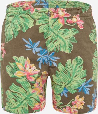 POLO RALPH LAUREN Shorts in mischfarben, Produktansicht