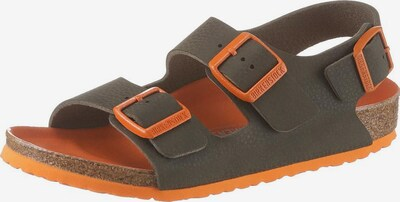 BIRKENSTOCK Sandale 'Milano' in grau / dunkelorange, Produktansicht