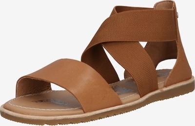 SOREL Sandales à lanières 'Ella' en marron, Vue avec produit