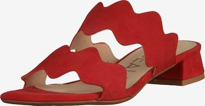 GADEA Pantoletten in rot, Produktansicht