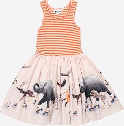 Molo Kleid 'Cassandra' in mischfarben, Produktansicht
