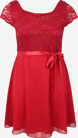 SWING Curve Kleid in rot, Produktansicht