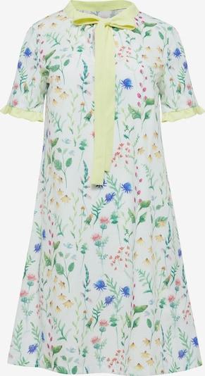 Usha Kleid in zitronengelb / grasgrün / rosa / weiß: Frontalansicht