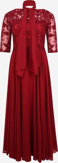 My Mascara Curves Kleid 'EMB Sleeve' in weinrot, Produktansicht