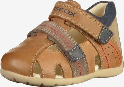 GEOX Sandalen in camel / navy / braun, Produktansicht