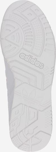 ADIDAS ORIGINALS Baskets basses 'A.R. Trainer' en rose / blanc: Vue de dessous