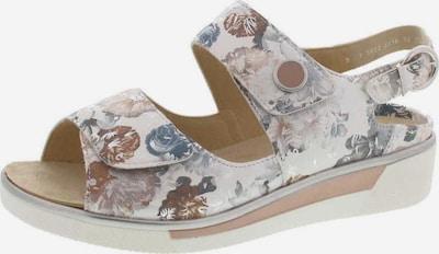 ARA Sandale in mischfarben: Frontalansicht