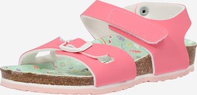 BIRKENSTOCK Sandalen 'Colorado' in de kleur Pink, Productweergave