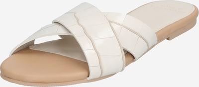 Abercrombie & Fitch Pantolette in beige, Produktansicht
