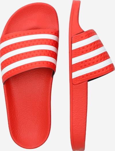 ADIDAS ORIGINALS Badeschuhe in rot / weiß: Seitenansicht