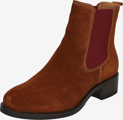 Chelsea batai 'AW19-GABY' iš Apple of Eden , spalva - ruda (konjako): Vaizdas iš priekio
