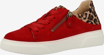 GABOR Sneaker in braun / rot / schwarz, Produktansicht