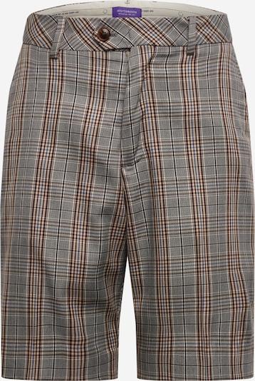 SCOTCH & SODA Pantalon en gris, Vue avec produit