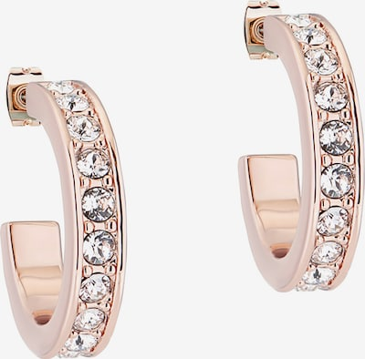Ted Baker Earring 'Seanna' in gold, Produktansicht