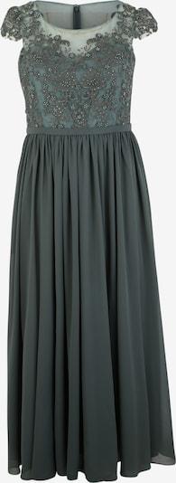 My Mascara Curves Kleid in dunkelgrün, Produktansicht