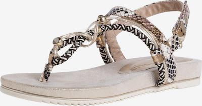 Sandalai iš TAMARIS , spalva - ruda / Auksas / juoda / balta, Prekių apžvalga