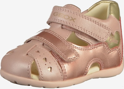 GEOX Kids Sandale 'Kaytan' in gold / rosegold / rosa: Frontalansicht