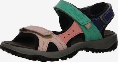SALAMANDER Sandalen in dunkelblau / jade / pink / rosa, Produktansicht