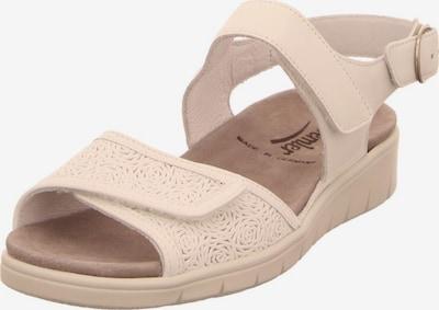 SEMLER Sandalen in beige, Produktansicht
