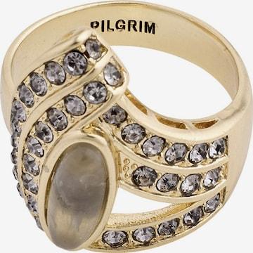Pilgrim Ring 'Delise' i gull