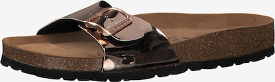 Šlepetės iš TAMARIS , spalva - bronzinė, Prekių apžvalga