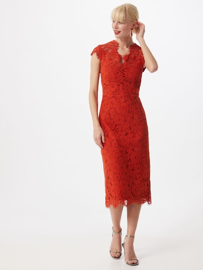IVY & OAK Kleid in rot, Modelansicht