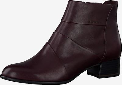 TAMARIS Ankle Boots in weinrot, Produktansicht