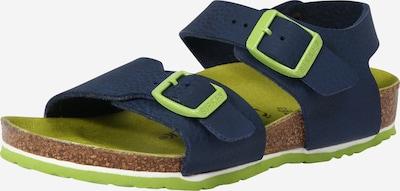 BIRKENSTOCK Open schoenen 'New York' in de kleur Ultramarine blauw / Groen, Productweergave