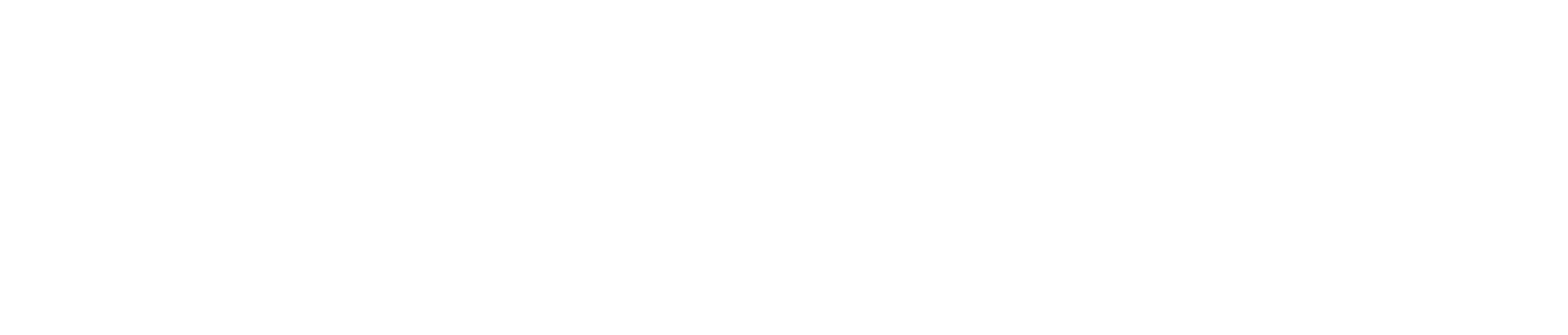Selected Homme Logo