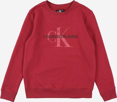 Calvin Klein Jeans Sweatshirt in rotviolett, Produktansicht