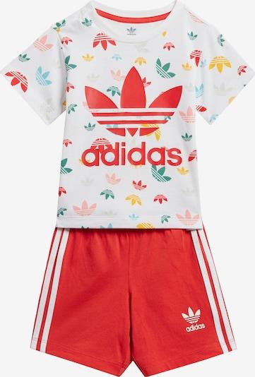ADIDAS ORIGINALS Joggingpak in de kleur Oranjerood / Wit, Productweergave