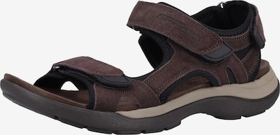 CAMEL ACTIVE Sandalen in dunkelbraun / schwarz, Produktansicht