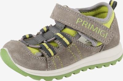 PRIMIGI Sneakers in Taupe / Kiwi / Fir, Item view