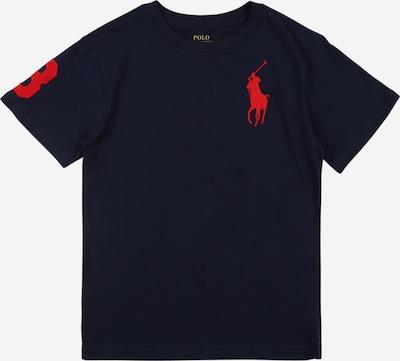 POLO RALPH LAUREN Shirt in navy / rot, Produktansicht