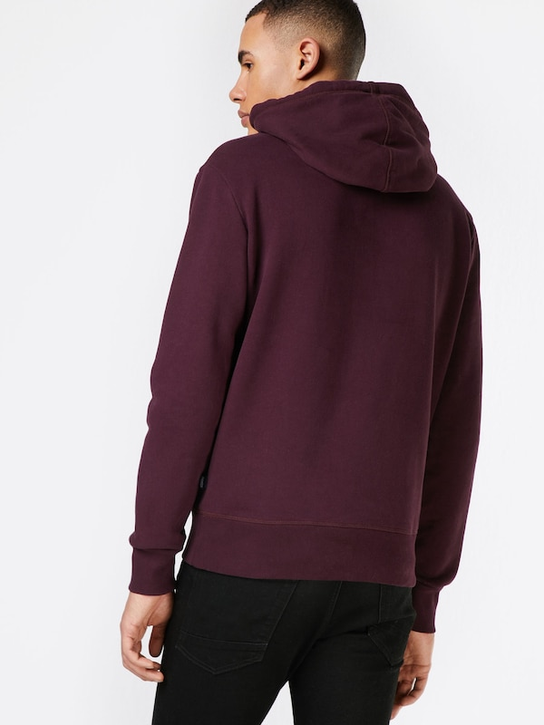 Superdry Hoodie 'AUTHENTIC MONO'