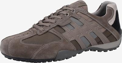 GEOX Sneakers laag in de kleur Grijs / Taupe / Zwart / Parelwit: Vooraanzicht