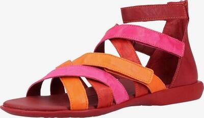 THINK! Riemensandale in orange / pink / feuerrot / cranberry, Produktansicht