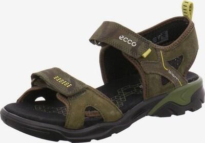 ECCO Sandalen in khaki / oliv, Produktansicht